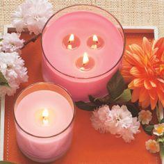 Bougie en Pot Escential Bougie en Pot 3-Mèches * Fleurs de Pommier  Catalogue Hiver/Printemps 2014