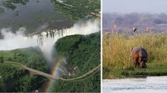 Is Zimbabwe still a safe safari option? We look at the situation on the ground in Hwange, Victoria Fall and Mana Pools and our advice for safari travellers. Just Go, To Go, Victoria Falls, Zimbabwe, Africa Travel, Niagara Falls, Safari, Waterfall, National Parks