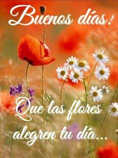 Good Morning, Good Morning Greetings, Be Nice, Naturaleza, Flowers, Messages, Bom Dia, Good Day, Buen Dia