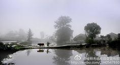 桂林市临桂县委宣传部的微博_微博