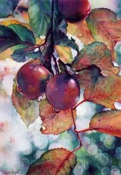 plant patterns in nature plant patterns mary gibbs Art Aquarelle, Watercolor Fruit, Fruit Painting, Watercolor Artists, Watercolor Landscape, Watercolor And Ink, Watercolor Flowers, Watercolor Paintings, Watercolours