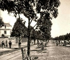 Avenida Paulista em 1900.