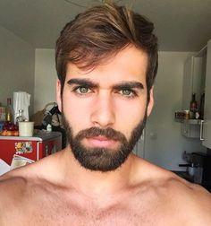 All the Beardos