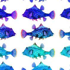 RAINBOW FUNNY LITTLE FISH PURPLE BLUE AQUA ON WHITE fabric by paysmage on Spoonflower - custom fabric