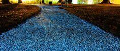 promenez-vous-sur-ce-magnifique-chemin-de-lumiere-ecologique-une