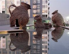 Call of the Wild - by Patrick Dougherty