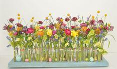 Spring Fling by Dalia Bortolotti, emc