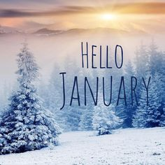 Next theme: January Seasons Months, Days And Months, Months In A Year, Winter Months, 12 Months, Winter Love, Winter Wonder, Hello Pictures, January Pictures