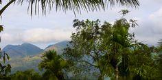 Greenex Farms India-farm stay,resort,chundale,wayanad,kerala,south india,nilgiri hills,nature,rustic living