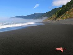Black Sands Beach along the Lost Coast of California. Definitely going here sometime.