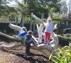 naturalized playground