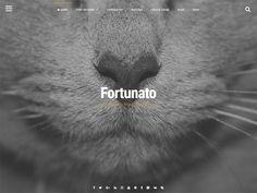 fortunato - Free Fullscreen WordPress Themes