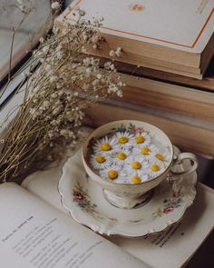 Cream Aesthetic, Classy Aesthetic, Brown Aesthetic, Flower Aesthetic, Aesthetic Food, Aesthetic Vintage, Aesthetic Photo, Aesthetic Pictures, Aesthetic Backgrounds
