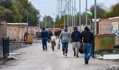 GROWING numbers of migrants are returning to the wastelands .surrounding Calais following the demolition of the notorious Jungle camp despite freezing conditions and heightened security, charity workers have warned..17