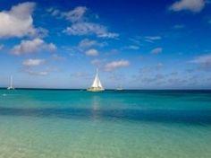 O Caribe nos traz lindas imagens. Publicamos lá no blog uma galeria das melhores fotos da nossa viagem por lá. Aqui o mar de perder o fôlego em Palm Beach Aruba. ------- The Caribbean brings us beautiful images. We publish on the blog a gallery of the best photos of our trip there. Here the breathtaking sea in Palm Beach Aruba. ------- #aruba #caribbean #caribe #palmbeach #sea #marazul #bestvacations #igtravel #instatravel #photooftheday #picoftheday #traveladdict #travelblog #travelgram…