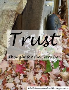 Trust - Thought for the Every Day. Trust, it's defined a tricky thing. Can you trust first or do you need proof of one sort or another before trusting.Free Printable. #trust #thoughtfortheday #inspiration