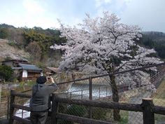Catching the moment in Tsumago 2013