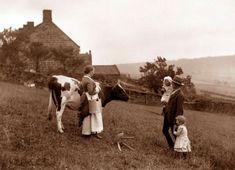 Frank Meadow Sutcliffe - Victorian Photographer