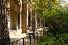 Jardins de Rubio i Lluch är en liten oas mitt i Raval där man kan sätta sig ner…