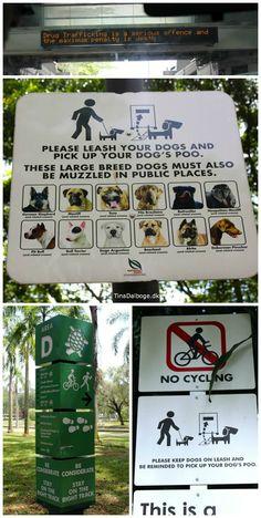 forbudsskilte Singapore