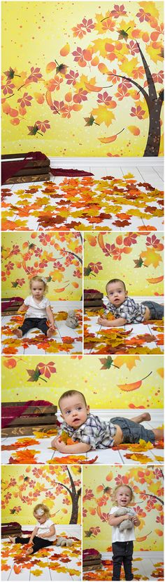 Autumn / Halloween photos featuring Windy Walks Printed Backdrop with Smooth White Planks Floordrop from Backdrop Express Halloween Photography, Halloween Photos, Planks, Chill, Backdrops, Mystery, Smooth, Walking, Autumn