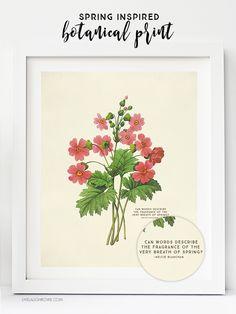 Vintage Botanical Prints are beautiful. Who doesn't love free printable wall art… Free Printable Art, Free Printables, Playroom Printables, Printable Vintage, Easter Printables, Free Prints, Wall Art Prints, Vintage Botanical Prints, Botanical Drawings