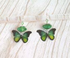 """Boucles d'oreilles """"Butterfly"""" perles en verre de Murano filé au chalumeau marbré vert-jaune : Boucles d'oreille par auverredoz"""