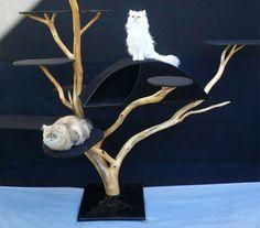 Enfin des arbres à chat ultra déco ! : 14-01-2011 – Dkomaison