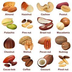 Dry Fruits List, Dry Fruits Names, Fruit Names, Fruit List, Food Names, English Learning Spoken, Learning English For Kids, Food Vocabulary, English Vocabulary Words