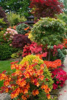 Adding Beauty to Your Garden With an Arbor Japanese Garden Backyard, Japanese Garden Design, Most Beautiful Gardens, Beautiful Flowers Garden, Garden Arbor, Garden Trees, Cottage Garden Design, Colorful Garden, Front Yard Landscaping