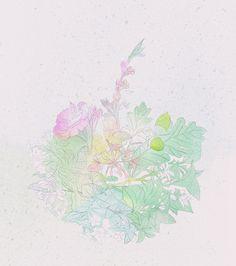 "Nina Ricci ""Cristal Collection"" (DRAFTS) - Ana Montiel Studio"