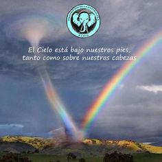 Hola!  Escucha, si quieres, nuestro podcast (radio show) dedicado a la Protección de la Naturaleza y la Evolución del Ser. Lo puedes oír aquí:http://naturalezaproteccion.blogspot.com Te mandamos un sincero abrazo de Corazón! Salud! Y si te resuena y te animas: compra una camiseta con el logo aquí:http://www.latostadora.com/naturalezaproteccion, te la pones, te haces un selfie y nos lo envías a escoladelser@gmail.com. Pondremos tu foto en la galería de Protectores de la Naturaleza