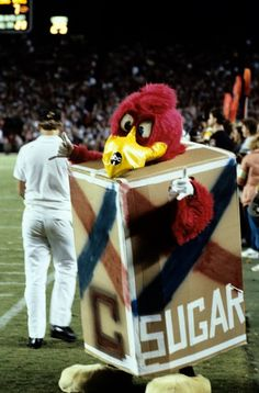 Cocky Throwback!  Throwing it back to the 1984 Florida State football game! #5 South Carolina defeated #11 Florida State 38-26! Cocky was on sidelines cheering on the team, of course!