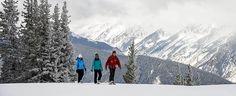 Snowshoe Tours of Aspen – Winter Nature Tour - Aspen Snowmass