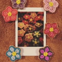 Instant Print Camera, Spring Pictures, Little Flowers, Card Sizes, Floral Tie, Seed Beads, Seeds, Fun, Prints