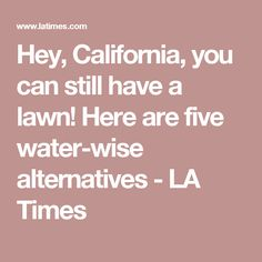 Hey, California, you can still have a lawn! Here are five water-wise alternatives - LA Times