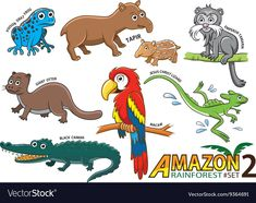 Set Of Cute Cartoon Animals And Birds In The Amazo Amazon Animals Cartoon Animals Rainforest Animals