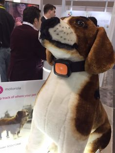 """MOTOROLA INTRODUCED THE FIRST """"SMARTPHONE"""" WEARABLE FOR DOGS"""