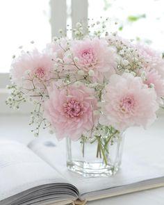 beautiful flowers names My Flower, Fresh Flowers, Spring Flowers, Flower Power, Beautiful Flowers, Spring Flower Arrangements, Beautiful Flower Arrangements, Floral Arrangements, Flower Decorations