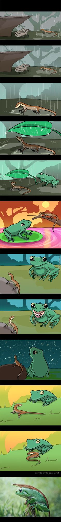 Sad yet funny how amphibians are more accepting than humans. Cute Funny Animals, Funny Cute, Super Funny, Animals And Pets, Baby Animals, Animal Pictures, Cute Pictures, Cute Comics, New Adventures