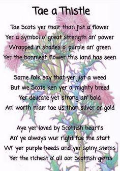30 Lovely Scots Poems for Kids Scottish Poems, Scottish Gaelic, Scottish Thistle, Scottish Highlands, Scottish Sayings, Scottish Flowers, Scottish Clans, Scotland History, Robert Burns