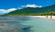 """""""Cape Tribulation is where the rainforest meets the reef""""  – Dale Flack, Tourism Tropical North Queensland"""