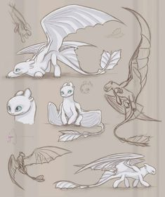 Character design and concept art illustration. Httyd Dragons, Dreamworks Dragons, Cute Dragons, How To Draw Dragons, Httyd 3, Fantasy Creatures, Mythical Creatures, Dragon Sketch, Dragon Drawings