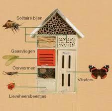 insectenhotel maken - Google zoeken