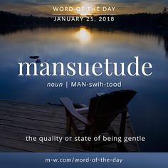 Mansuetude: the quality or state of being gentle Unusual Words, Weird Words, Rare Words, Unique Words, Beautiful Words, Fancy Words, Words To Use, Great Words, New Words
