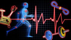 How Exercise Affects Your Body (and How to Pick the Right Workout) - Lifehacker Race Walking, Power Walking, Health And Wellness, Health And Beauty, Health Fitness, Fitness Facts, Men's Fitness, Healthy Exercise, How To Stay Healthy