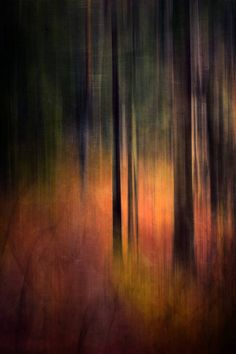 """Photography, """"Forest colors – Limited edition – Photography, Landscape photography, Photography tips Abstract Photography, Artistic Photography, Fine Art Photography, Levitation Photography, Experimental Photography, Exposure Photography, Water Photography, Photography Portraits, Digital Photography"""