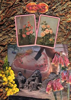 Our Picnic at Hanging Rock - Rookie Collages, Collage Art, Picnic At Hanging Rock, Photocollage, Oeuvre D'art, Renaissance, Aesthetic Wallpapers, Art Inspo, Illustration Art