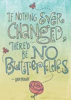 If nothing ever changed there'd be no butterflies