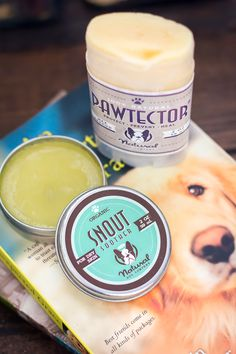We treat our dogs like family and only give them the best products. These all natural dog products from Natural Dog Company are the perfect solution to cracked paws or noses. | Learn all the details on Modish and Main